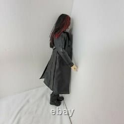 Integrity Toys Dark Hunter Acheron Ashton Drake doll fashion royalty IT